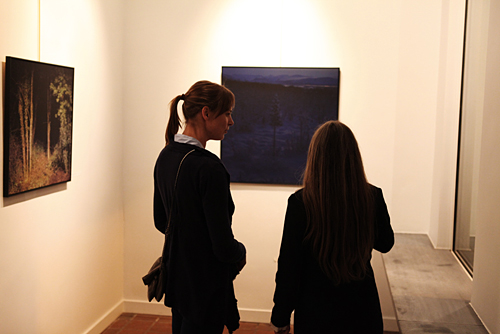 Opening Into the light @ Art 12 Gallery, Antwerpen