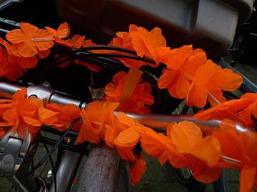 Zaken van oranje