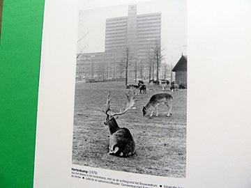 Gyz la Rivière, Rotterdam 2040