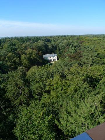 De wonderebomenwereld van Schovenhorst