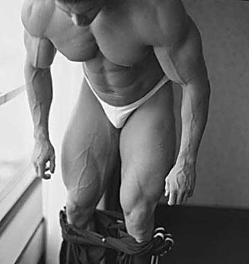 muscle_02.jpg