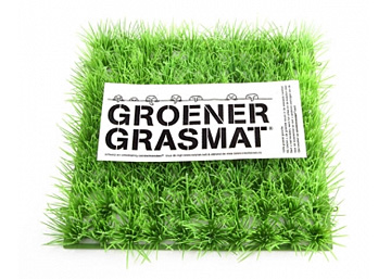 Groener dan gras