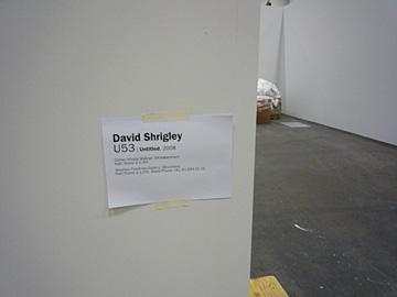 shrigley
