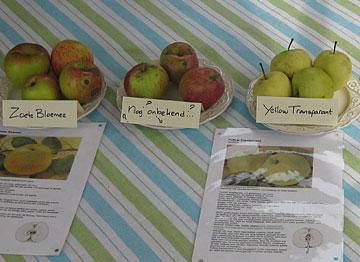 appelsoorten