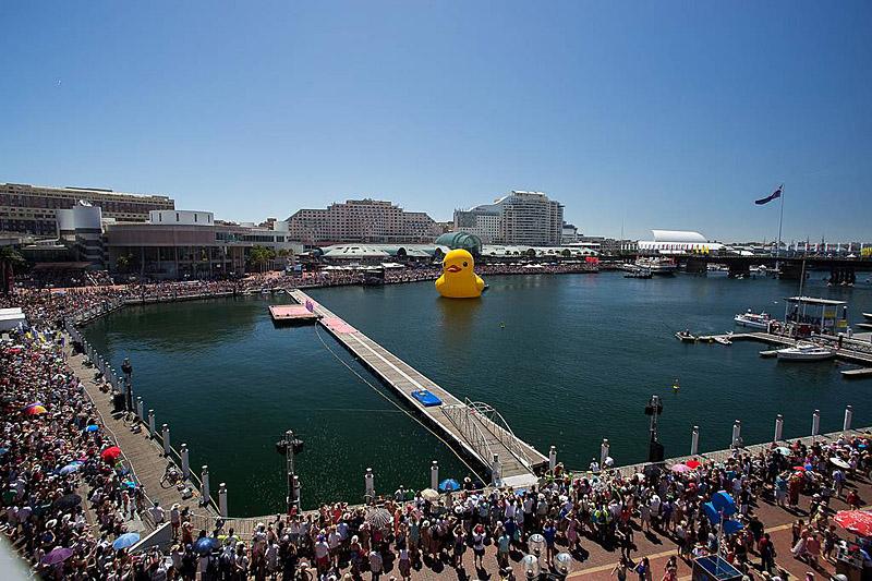 sydney australia rubber duck 7