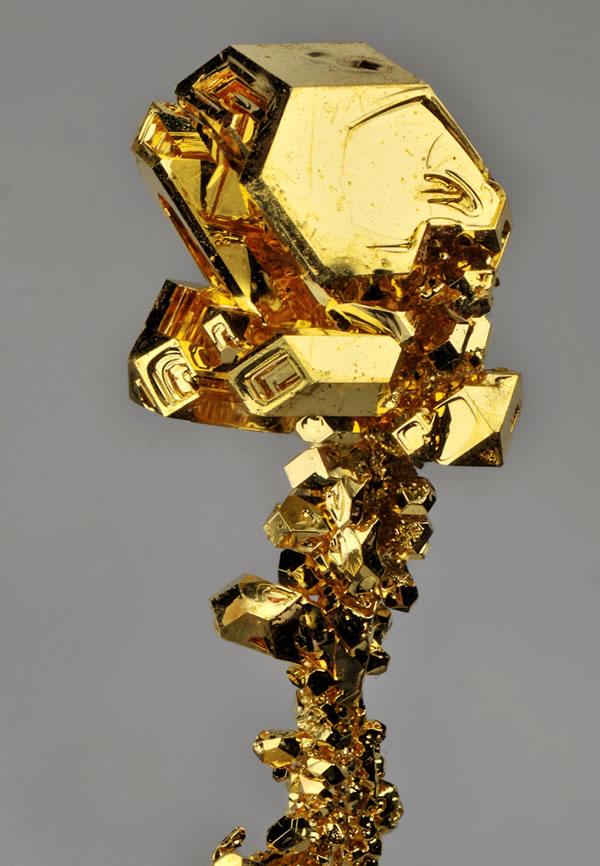element-tanaka-gold