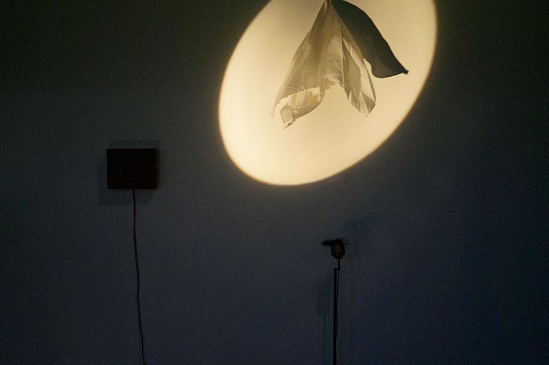 peter-zegveld-spookvogel
