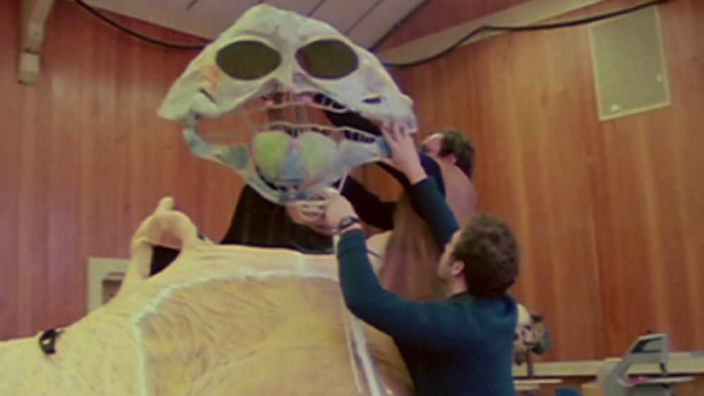 Life Inside Jabba the Hutt