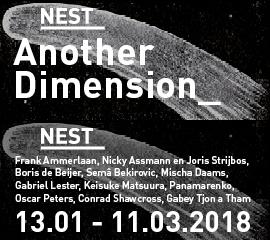 Nest_2018_jan_b
