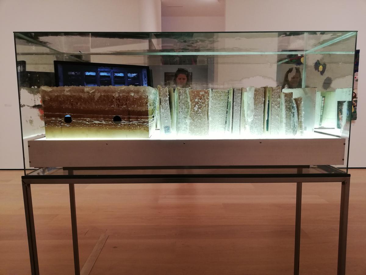Los Angeles musea: Hammer Museum