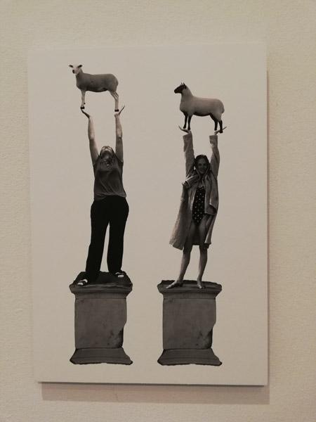 Wintrum, Orla Barry & Lutece Mauger, Ode to the Mouflon Ewe, digitale druk, 2019